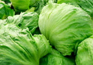 Fruits and Vegetables Containing Norovirus
