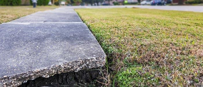 Sidewalk Liability