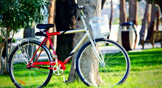Spring Back Into Bicycle Season