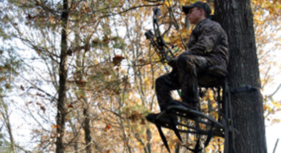Does Hunting Season Increase Deer-Related Accidents?