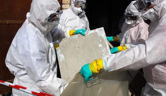Worker Holding Asbestos